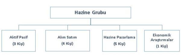 hazine_grubu_organizasyon_semasi
